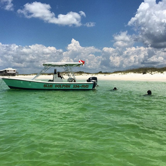 Looking for wildlife at Shell Island near St Andrews State Park in NW Florida